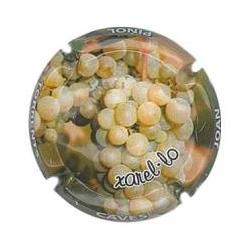 Joan Piñol Torrents X-78538...