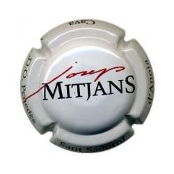 Josep Mitjans X-13101 V-1819