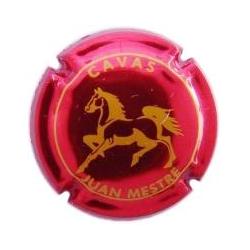 Juan Mestre X-37382 V-11892