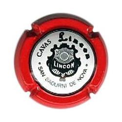 Lincon X-3119 V-1022