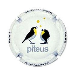 Piteus X-97071