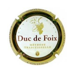 Duc de Foix X-605 V-2176