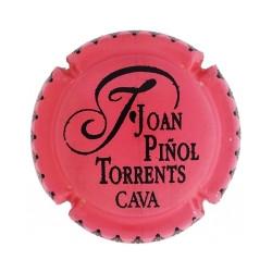 Joan Piñol Torrents X-194209